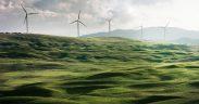 eolic wind tourbines in a green landscape